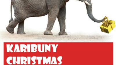 Karibuny Christmas shop